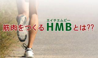 筋肉をつくるHMBとは